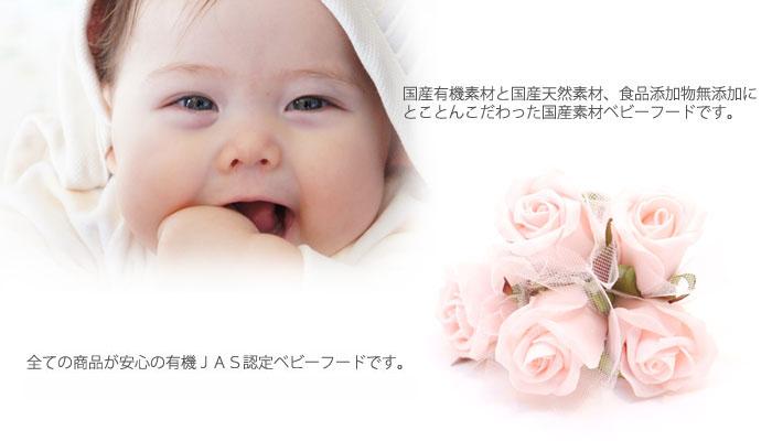 Ofukuro【有機まるごとベビーフード】イテフヤ
