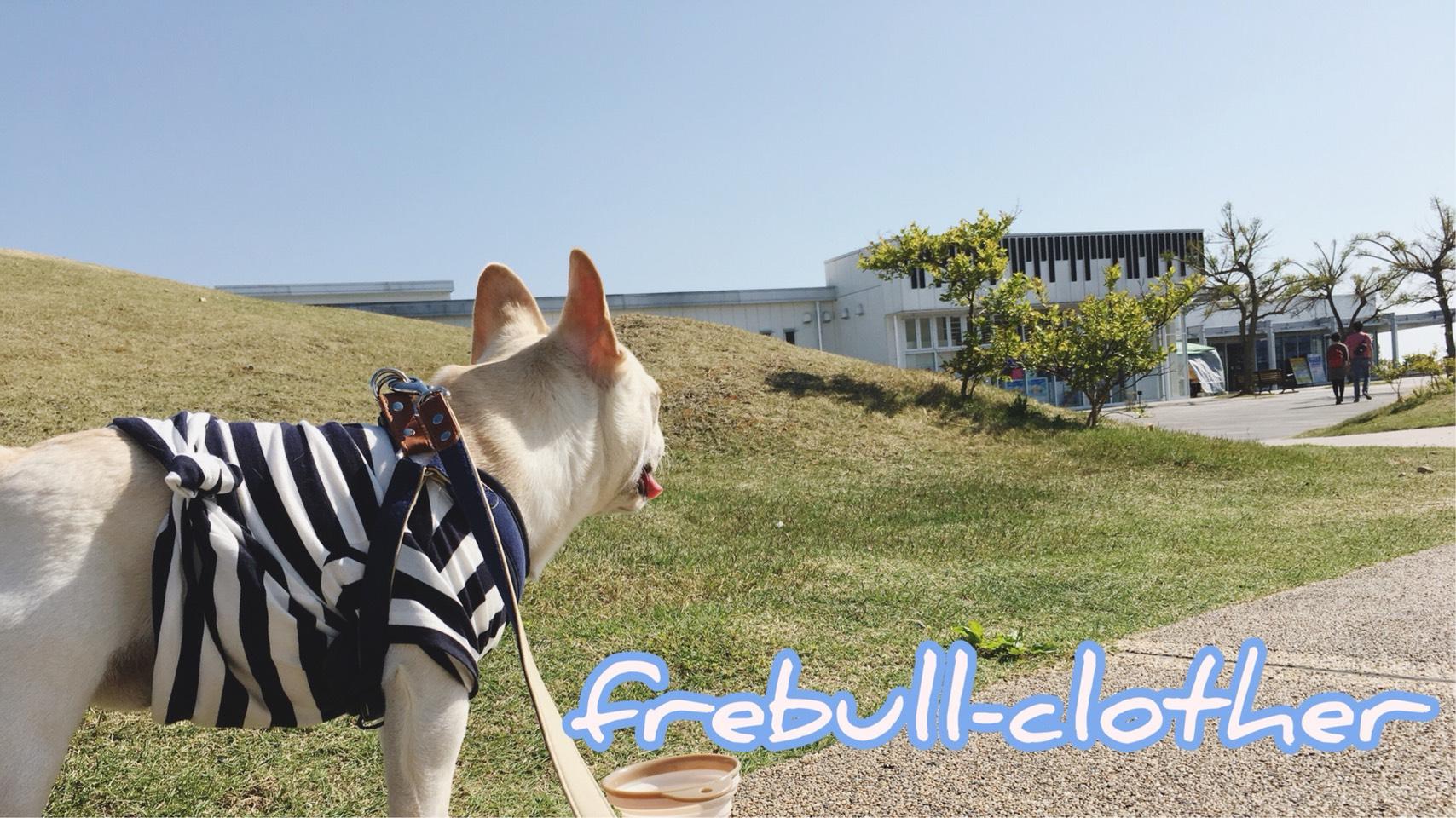 frebull-clother かわいいドッグウェア・鼻ぺちゃ専門の通販紹介画像2