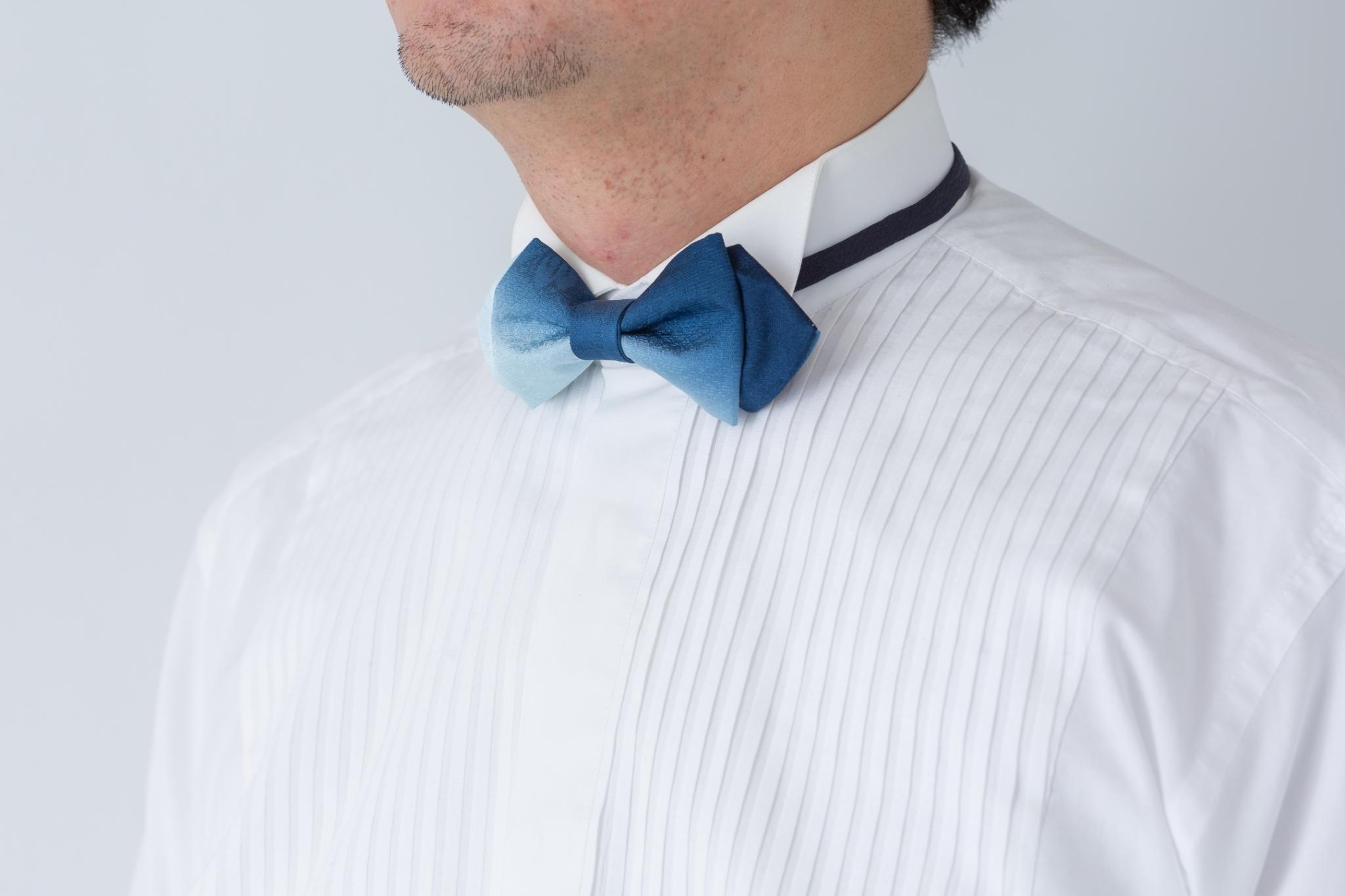 Chameleon Tie