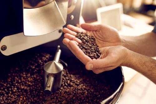 手作りコーヒー豆専門店 豆の樹紹介画像2