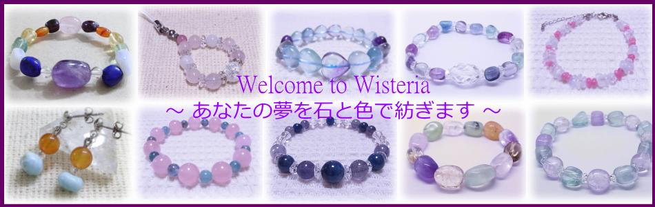 Wisteria(ウィステリア)紹介画像1