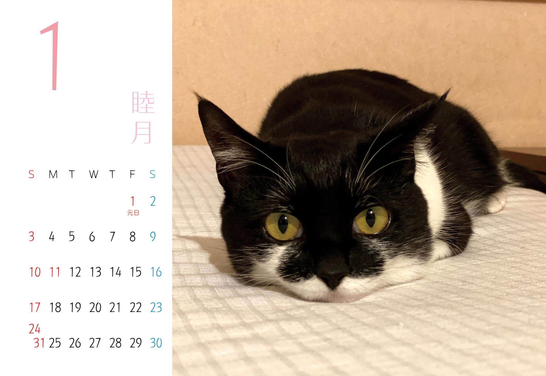 2021 千葉ちゃんカレンダー