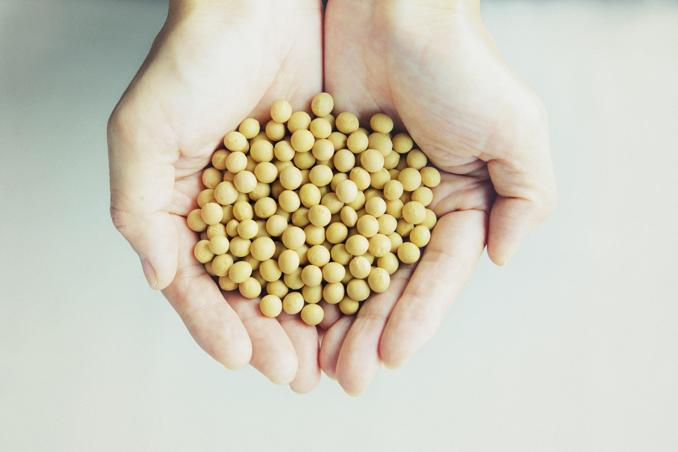 国産大豆を使用した本物志向のスイーツ-913ヌフアントロワ(neufuntrois)紹介画像1
