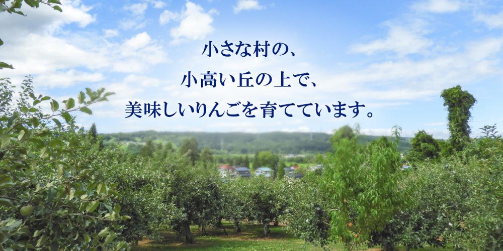 小さな村の小高い丘の上で美味しいりんごを育てています。