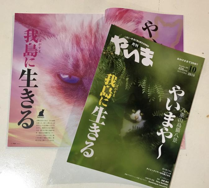 島猫特集「月刊 やいま」10月号