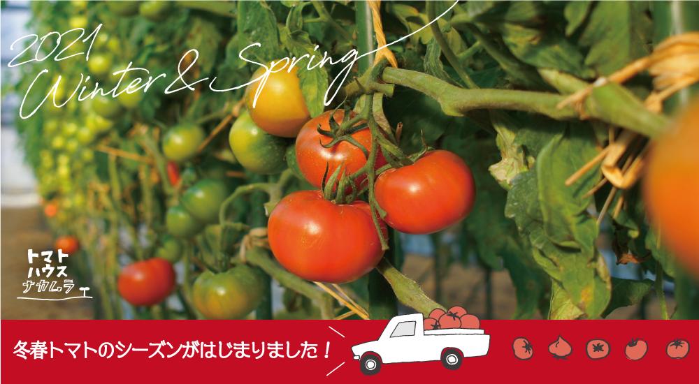 トマトハウスナカムラ紹介画像2