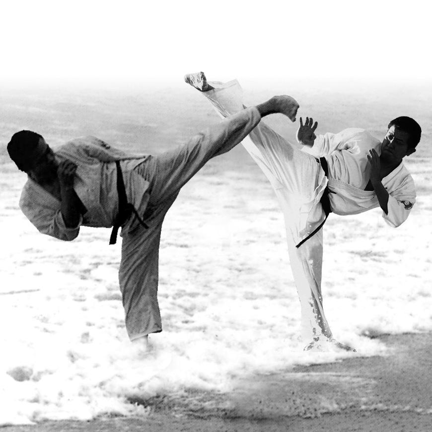 Ashihara Karate Web Store紹介画像2