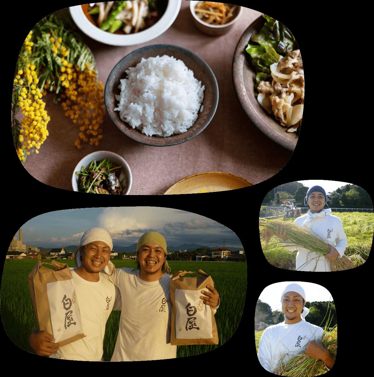 白屋.福岡県の田舎「香春町」(かわらまち)でお米作りをしています