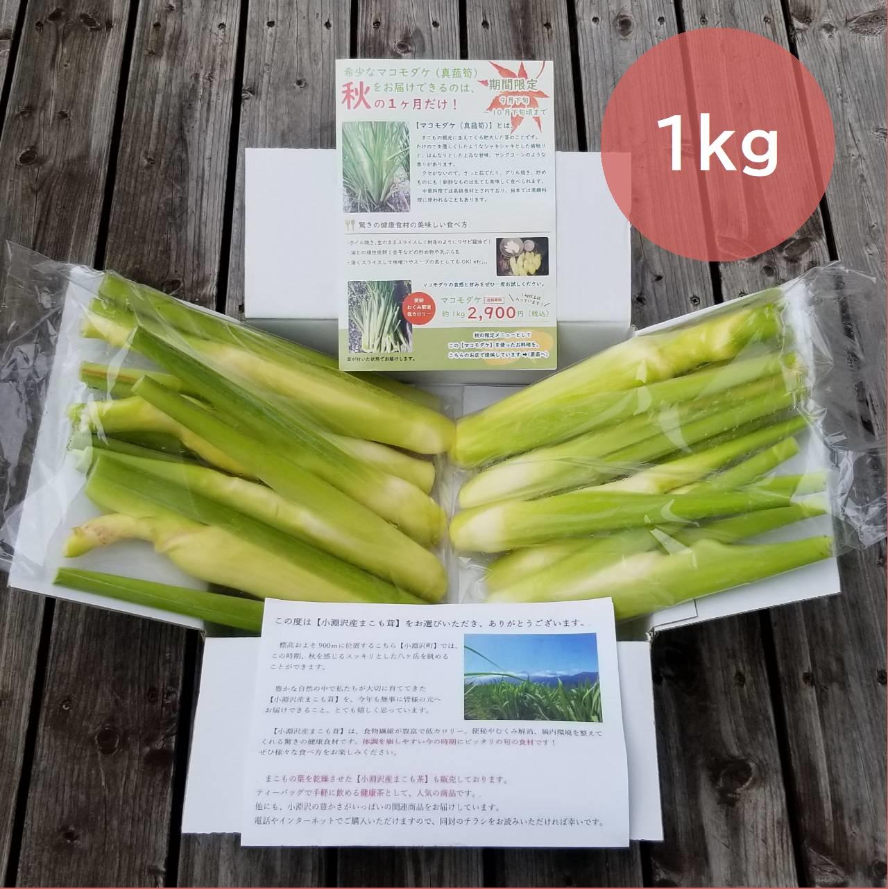 【9月下旬~10月限定】収穫直後の新鮮マコモダケ【1kg単位】