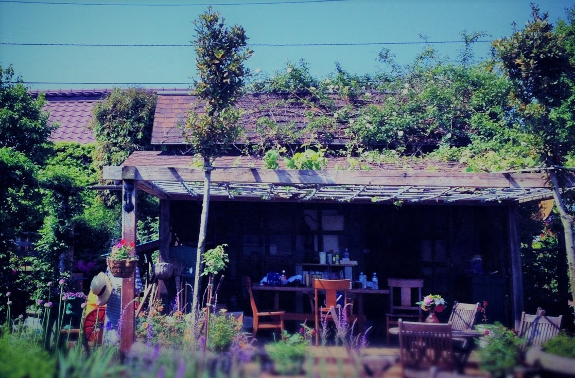 ROSE&PLANTS 458紹介画像1