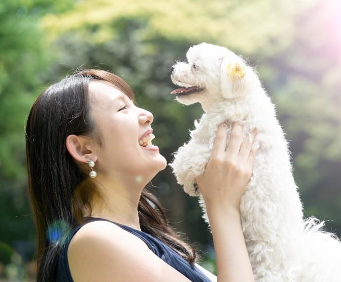 愛犬と少しでも長く一緒に過ごしたいから。<br>無添加ドッグフード通販のわんだふるスパ<br>